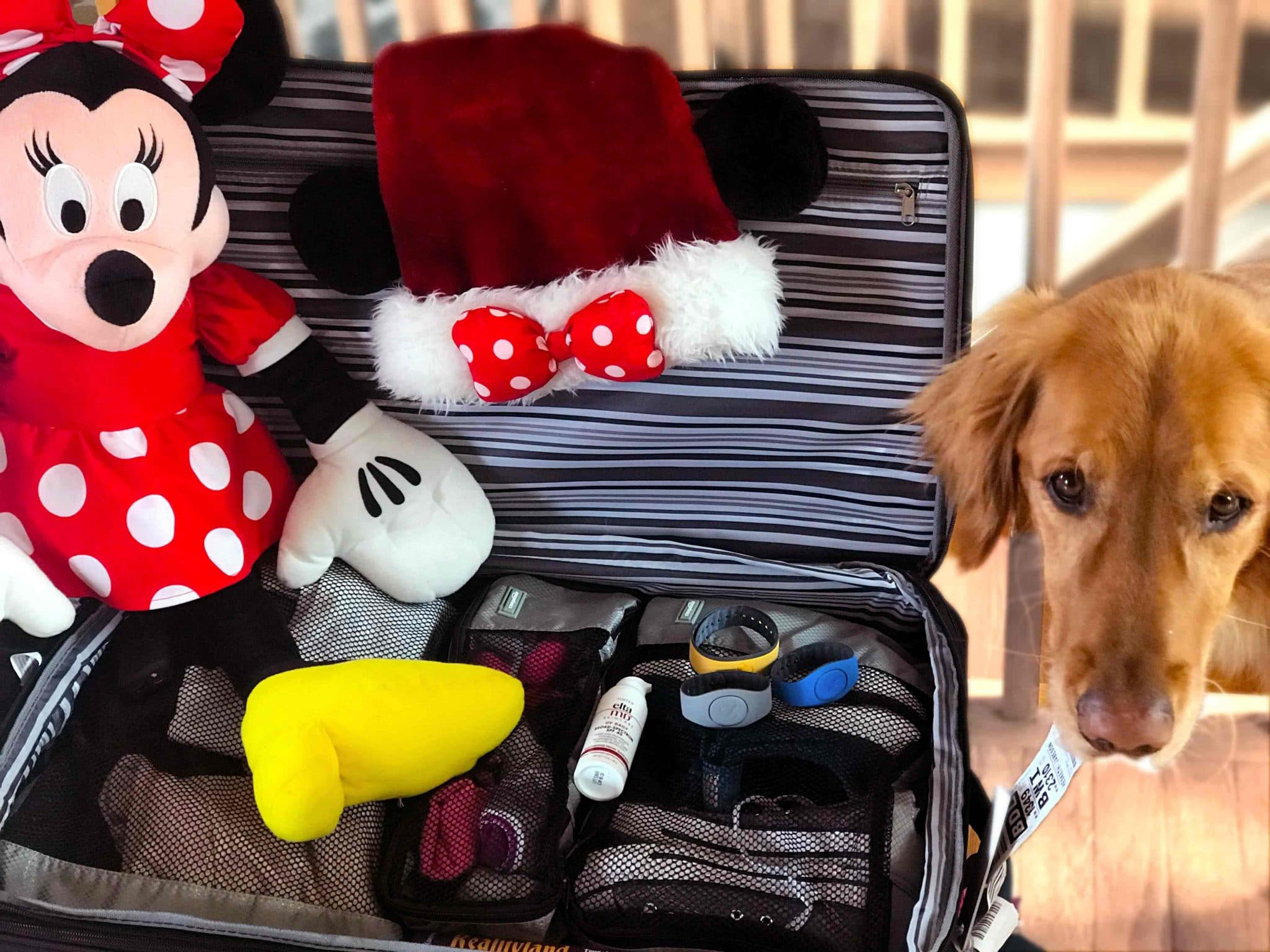 Disney vacation planning- your essential packing list. Seconds to Go